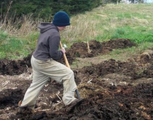 Arielle spreads compost over the New Garden before I till it in with the tractor.