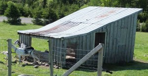 I converted this old building to a run-in/chicken coop.  The goats use the side facing let.  The coop is to the right.