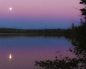 The midsummer super moonrise.