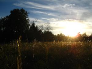 near samhain