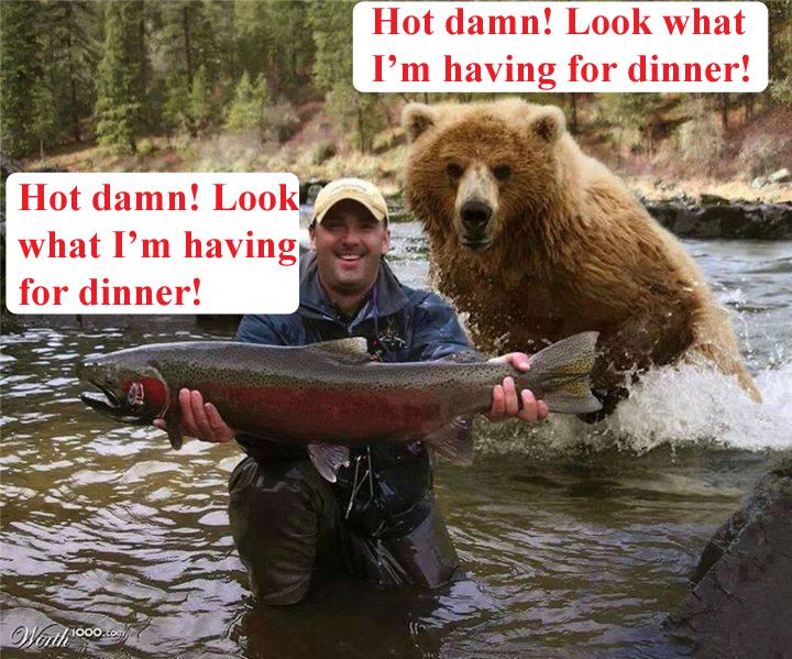 bear man salmon copy