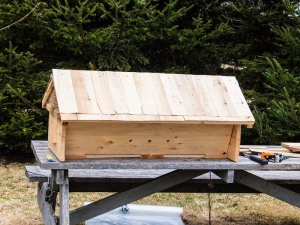 "A top bar hive with removable roof, pluggable entrances, and dividable into three subunits for hive management summer and winter. It is built with 1"" spruce for insulation."