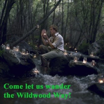 wildwood way promo